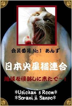 日本火星猫連合 会員番号No.1 あんず - コピー.jpg