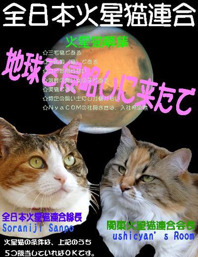 日本火星猫連合ポスター - コピー.jpg